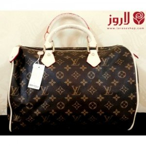 Louis Vuitton Bag - Leather Brown Box